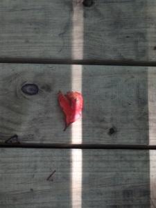 A heart...