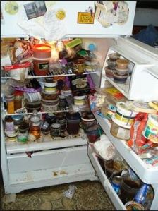 A nasty refrigerator posing in place of mine. courtesy of granitetransformations