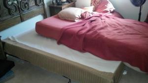 The Broken Bed being put back together